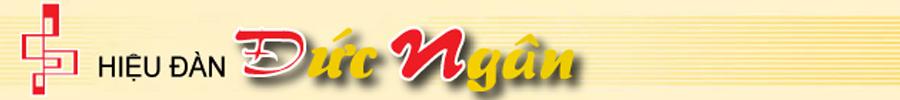 Sản phẩm,Hieu Dan Duc Ngan: Guitar bass, Guitar vọng cổ, Đàn Mandoline, Đàn tranh, Đàn Bầu, Đàn Gáo, Đàn Hồ, Đàn Nguyệt, Đàn Đáy, Đàn Tỳ Bà, Đàn Sến, Đàn Đoãn, Ukulele